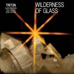 Alan Wakeman's CD re-issue of 'Wilderness of Glass'